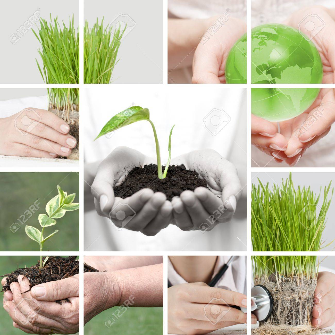 New life collage by human hands take care about nature. Stock Photo - 9019544