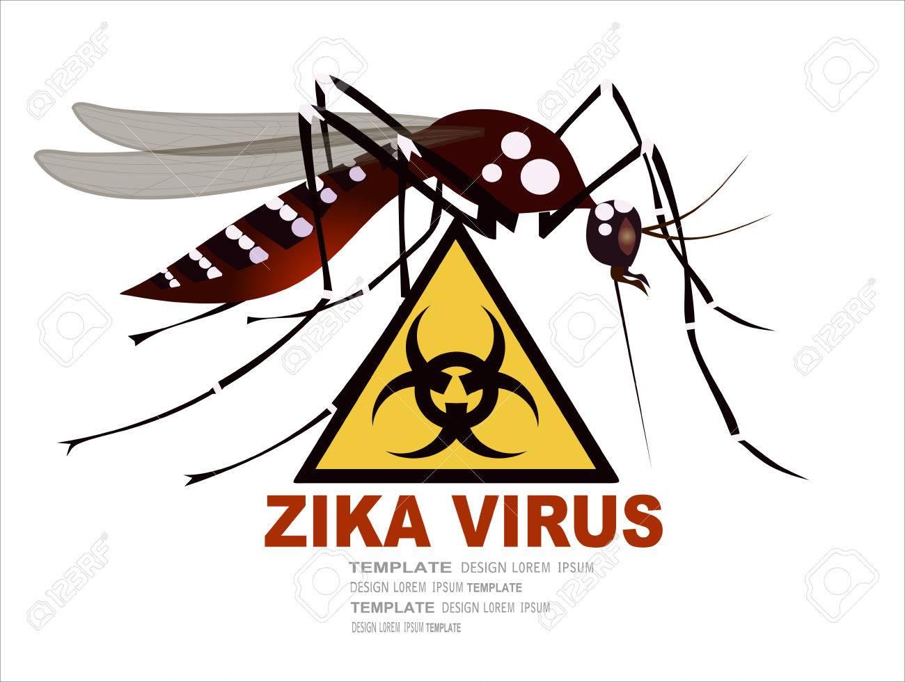 Zika virus warning sign, vector - 52780764
