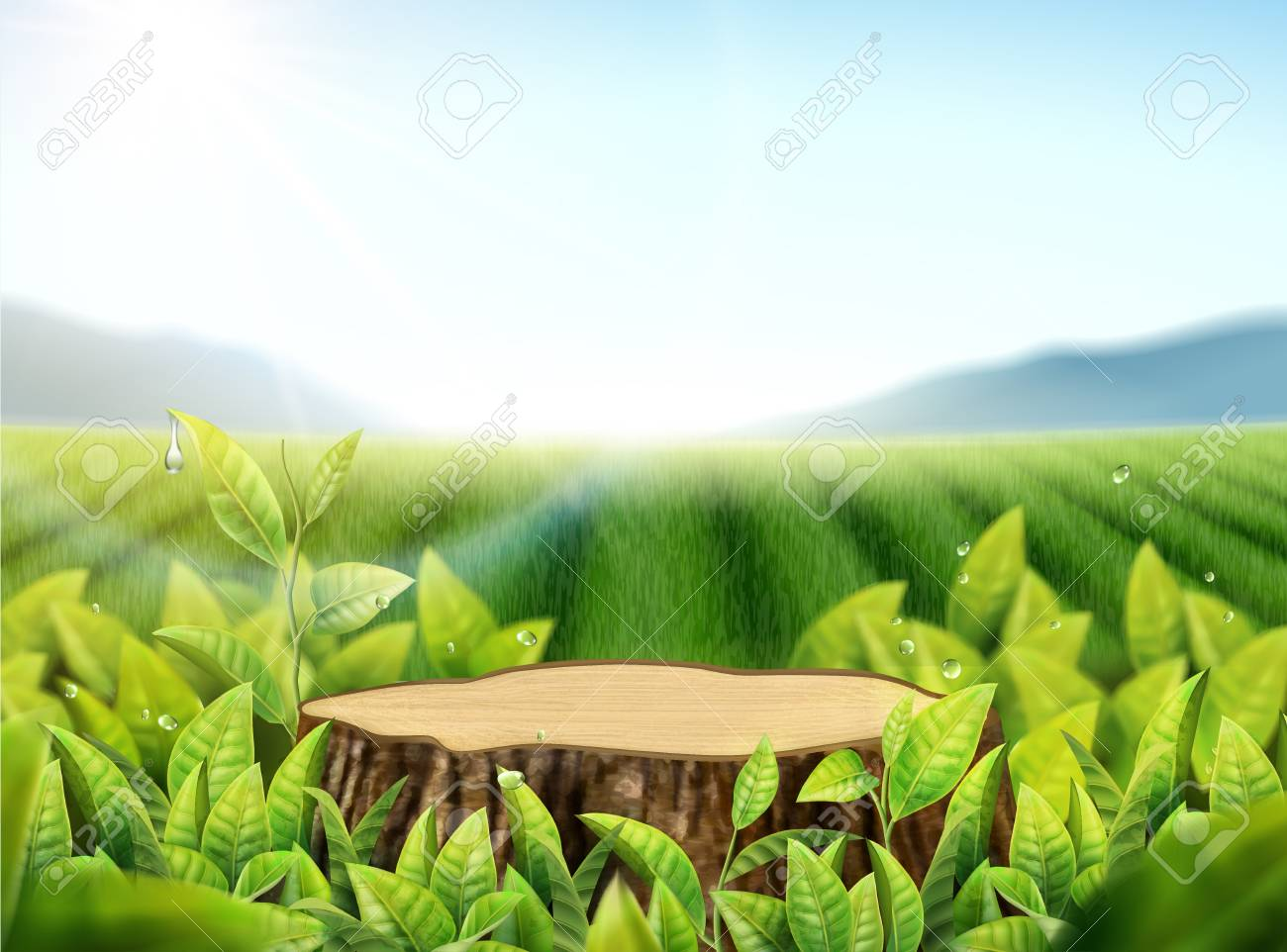 Nature tea garden background with leaves and cut tree trunk in..