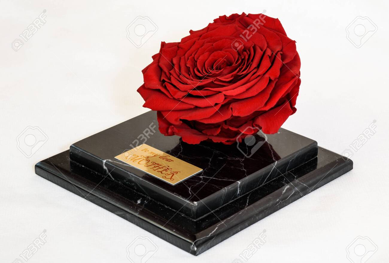 enchanted red rose on the black marble platform as an exclusive present for the mother's day - 145854957