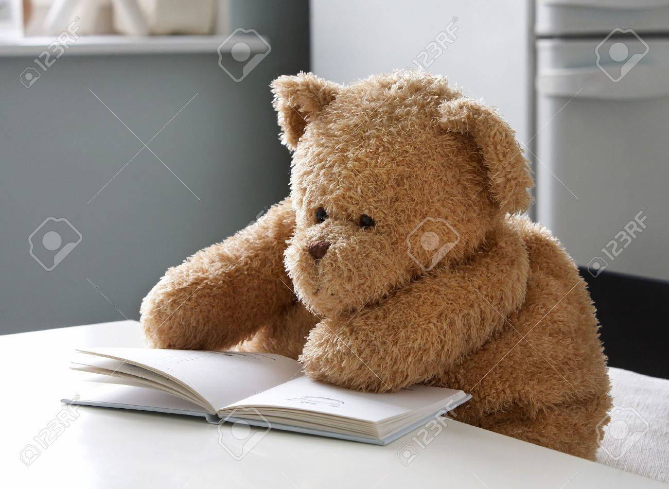 teddy bear reads a book stock photo picture and royalty free