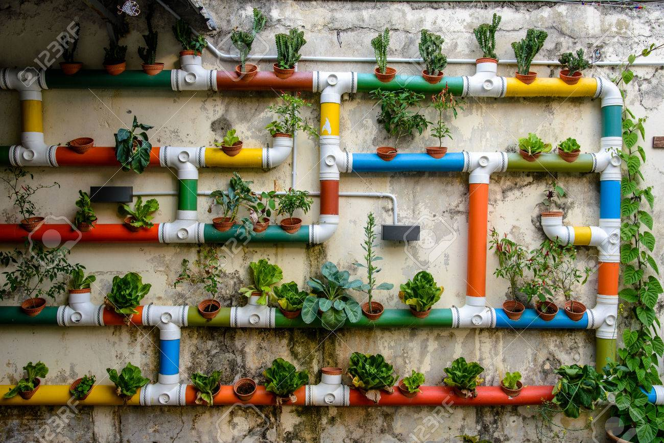 Urban Gardening Colorful Pipes Filled With Salad And Plants Stock