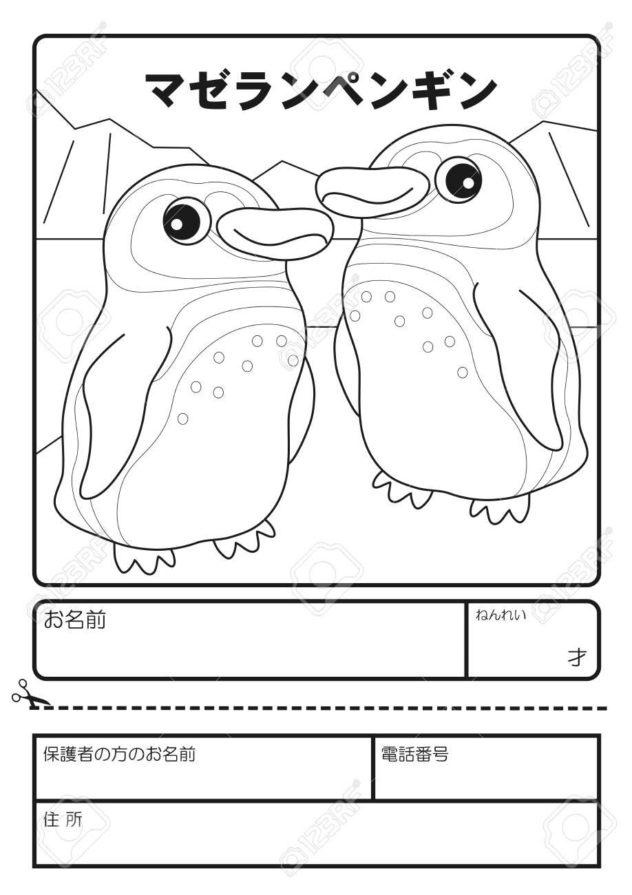 - Magellan Penguin Coloring Book Application Form Lizenzfreie Fotos