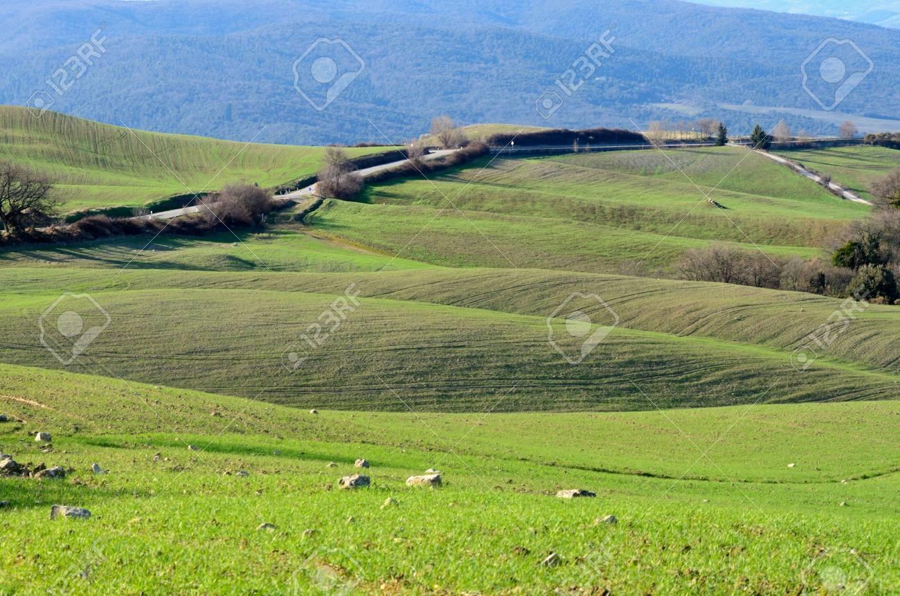 Tuscan landscape Stock Photo - 12850117