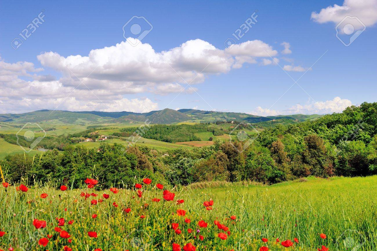 A beautiful landscape in springtime along the roads of Tuscany Stock Photo - 13587473