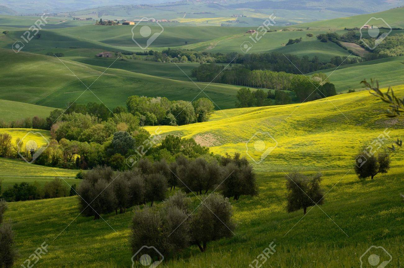 One of the most beautiful country landscape in Tuscany Stock Photo - 13841945