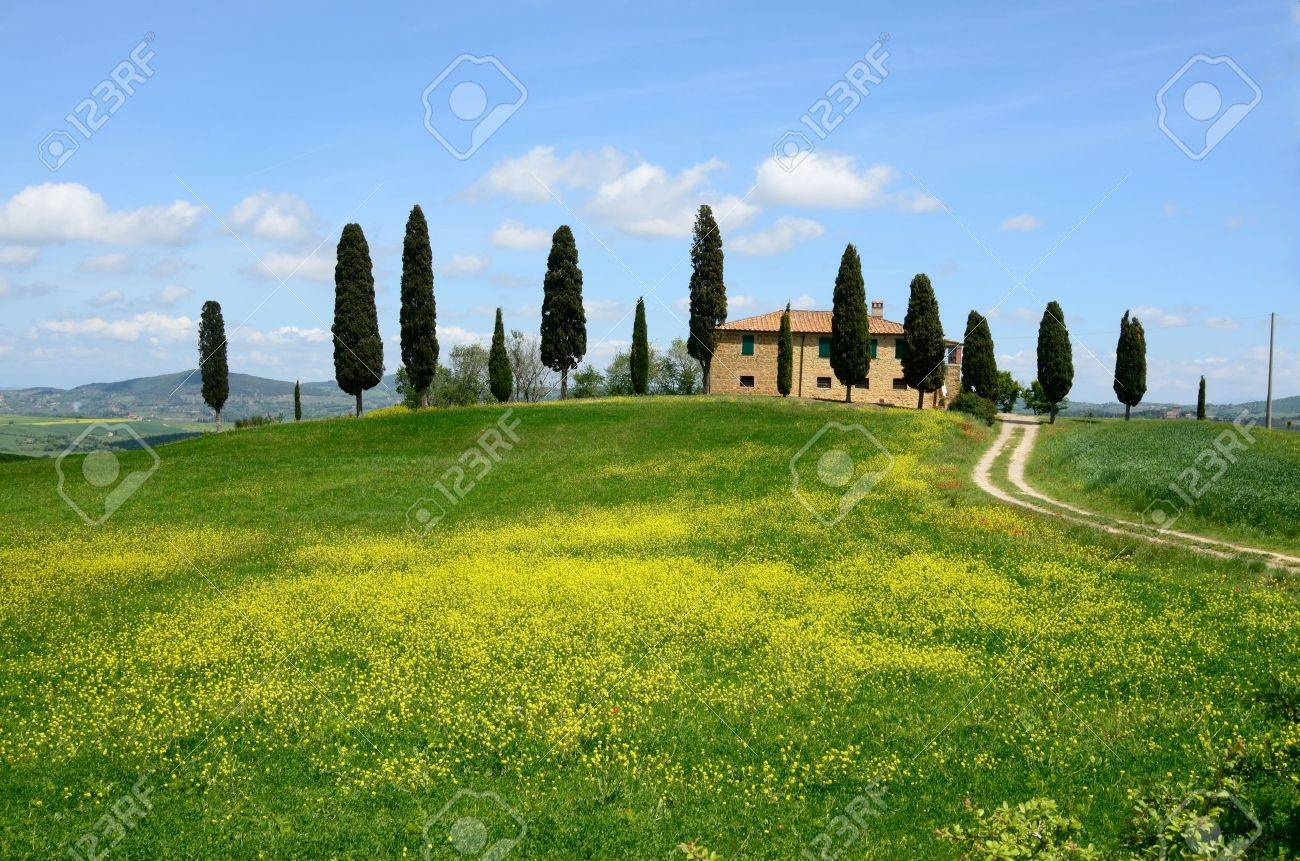 One of the most beautiful country landscape in Tuscany Stock Photo - 13841946