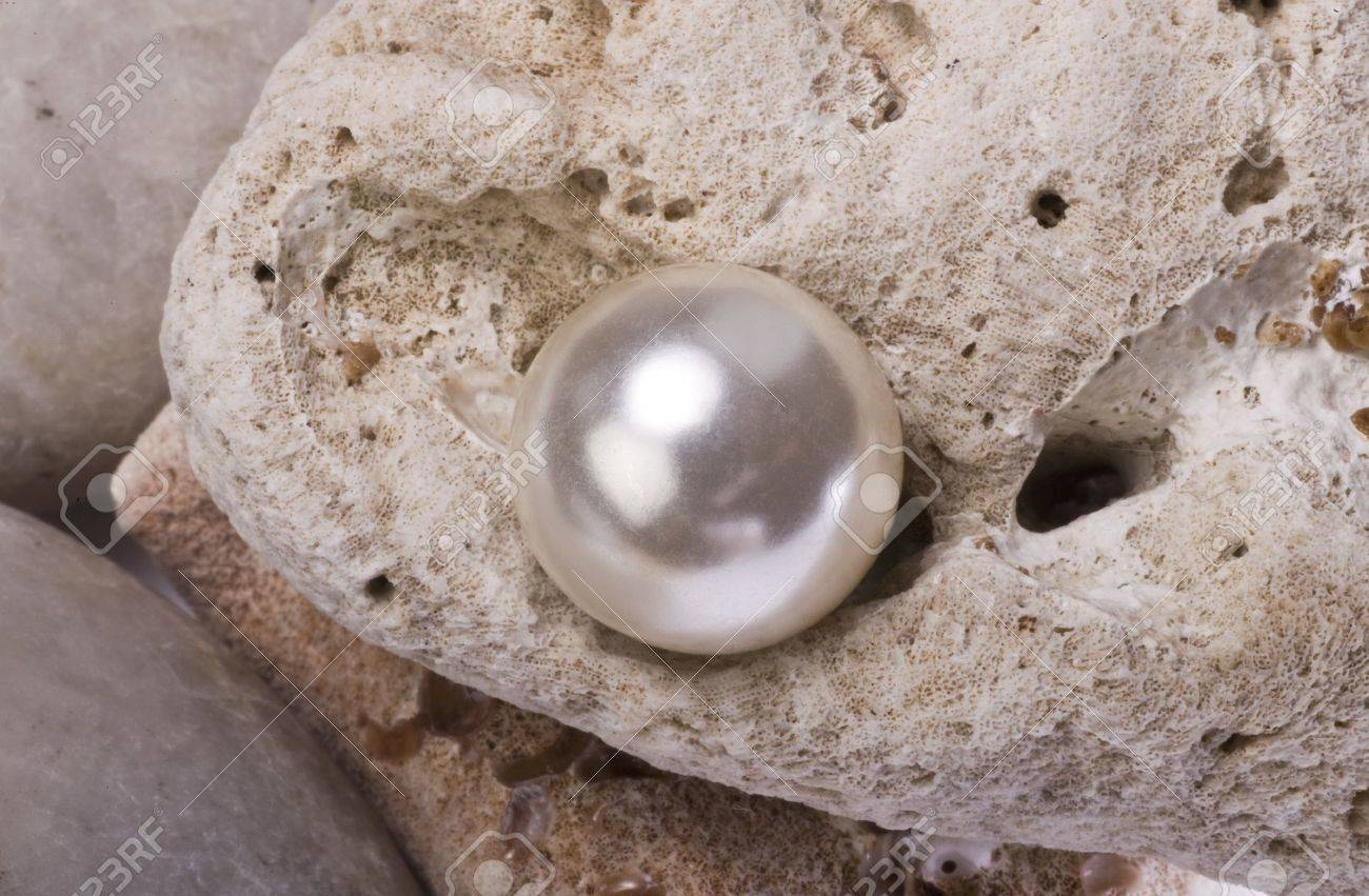 Large White Pearl Stock Photo - 11107255