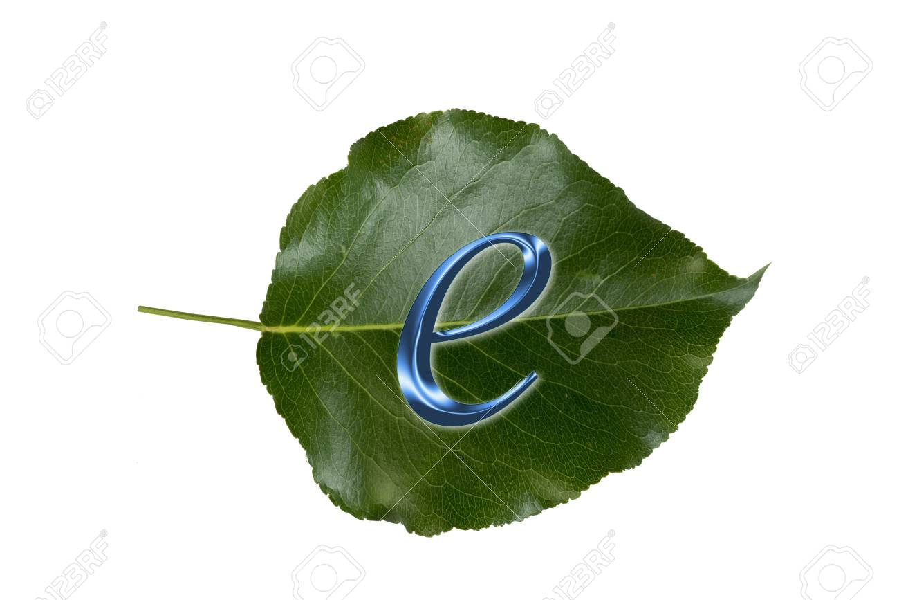 E-Commerce is green business Stock Photo - 19807775
