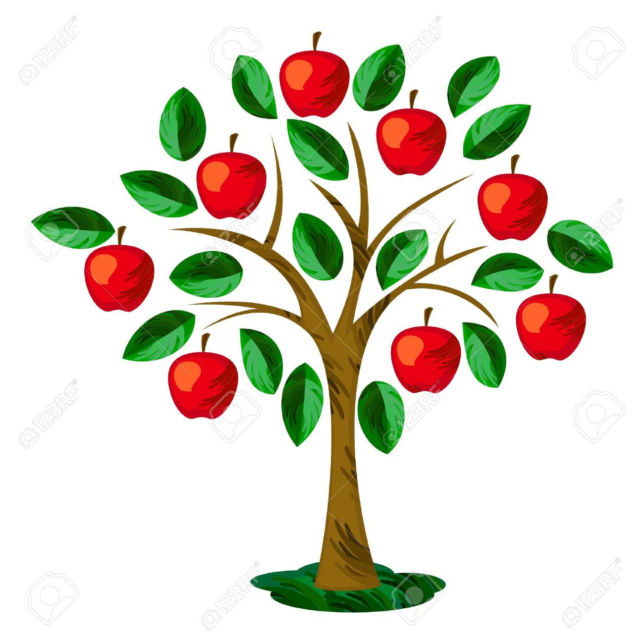 Ordinary Tree With Fruits Part - 11: Isolated Apple Tree With Leaves And Fruits Stock Vector - 18845688
