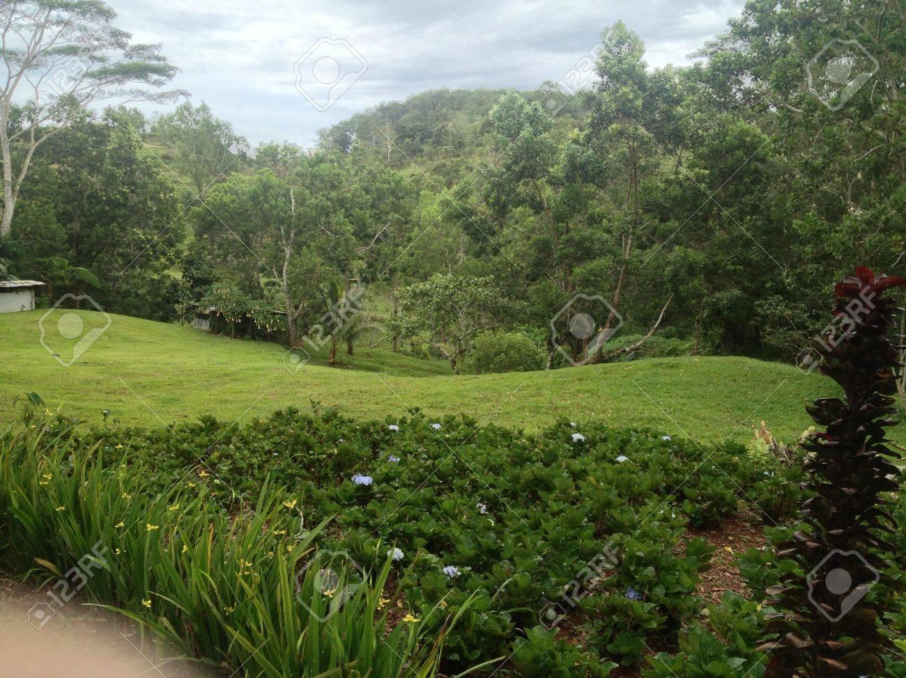 Giardino Di Una Casa questo bellissimo paesaggio è stata presa al giardino di una casa di riposo  amici su una montagna.