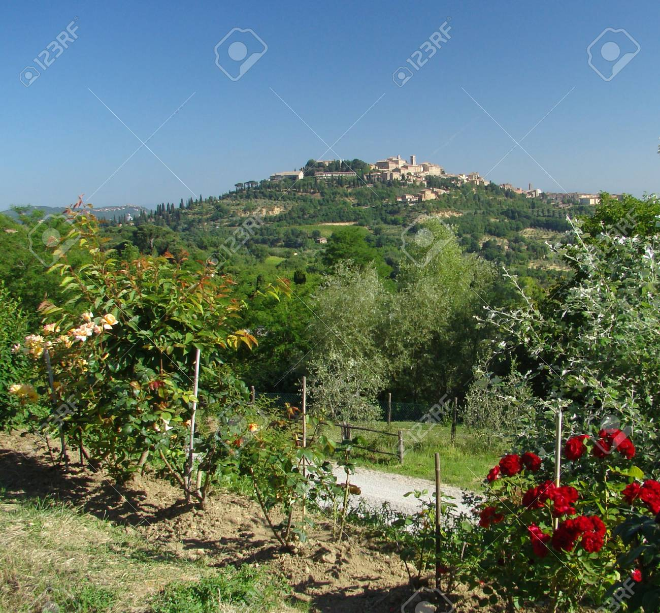 Montepulciano- hill town in Tuscany Stock Photo - 5636091