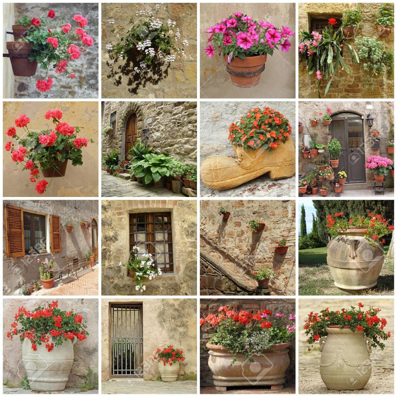Jardinería Collage De Macetas En La Pared, Terraza, Patios Y Delante ...