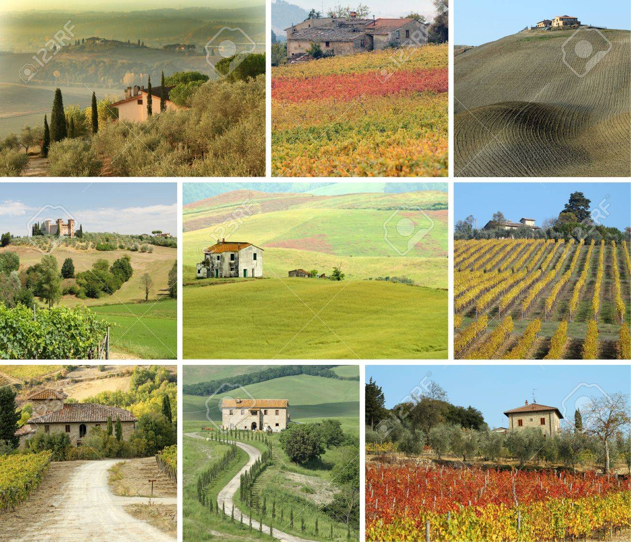 collage with tuscan houses in scenic landscape  Stock Photo - 12532108