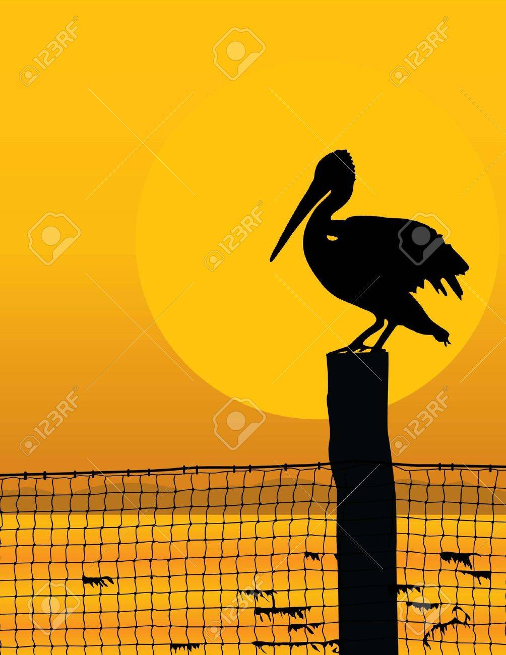 Black silhouette of a pelican against a sunrise/sunset Stock Vector - 2450051