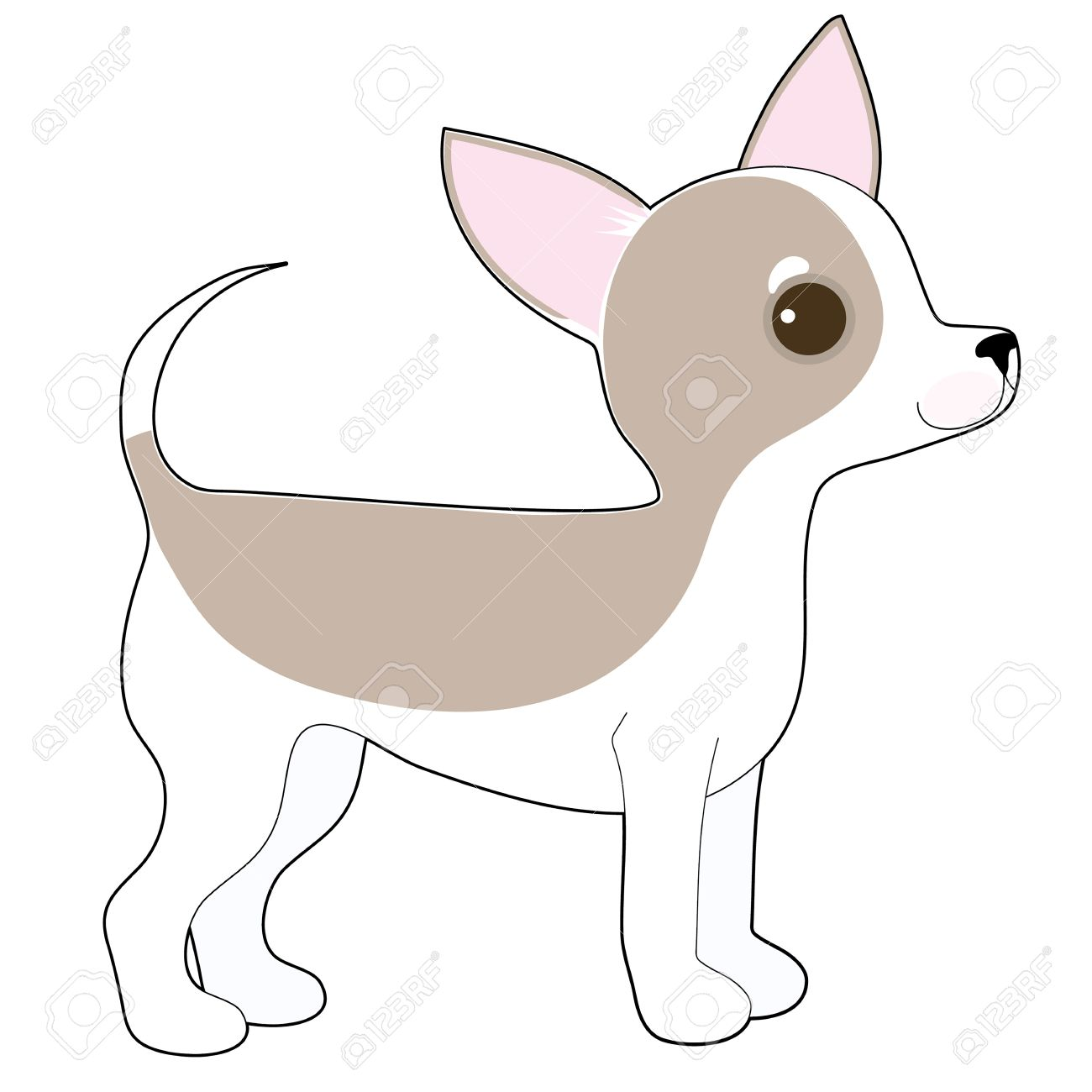 A Cartoon Drawing Of A Cute Little Chihuahua Royalty Free Cliparts ...