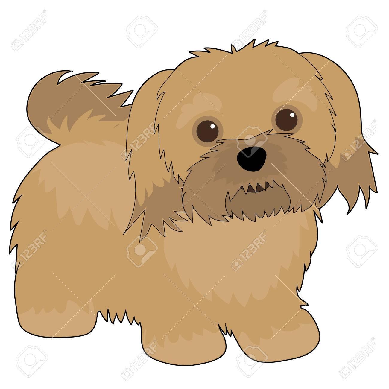 A cartoon illustration of a Havanese dog - 30180874
