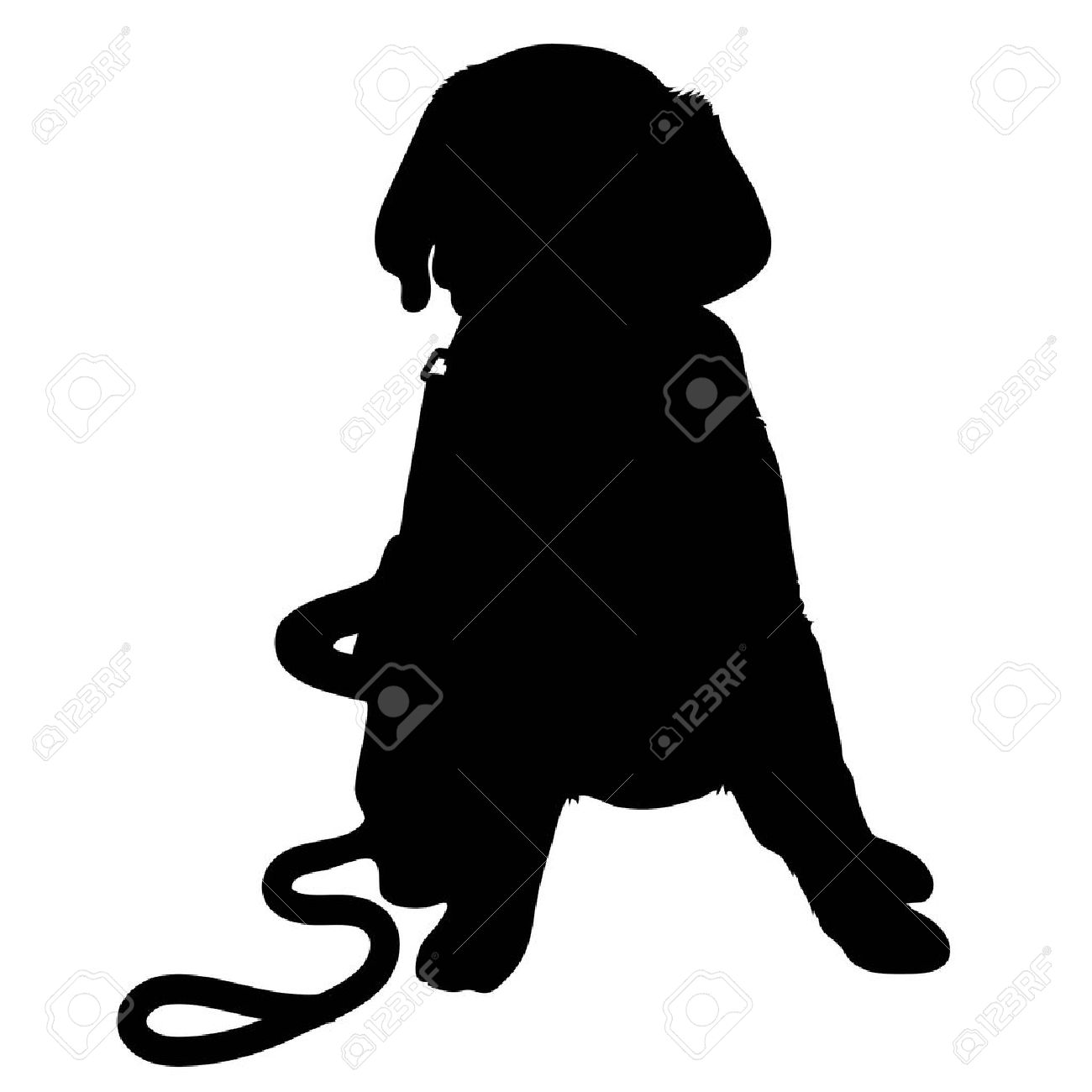A black silhouette of a Labrador Retriever puppy with a leash by its side - 31510186