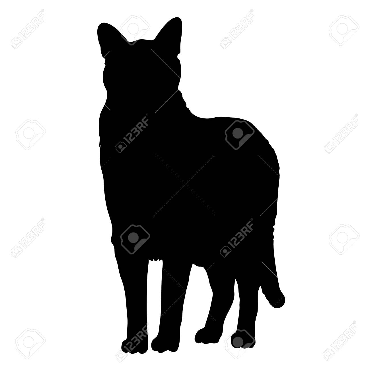 A black silhouette of a cat - 41855407
