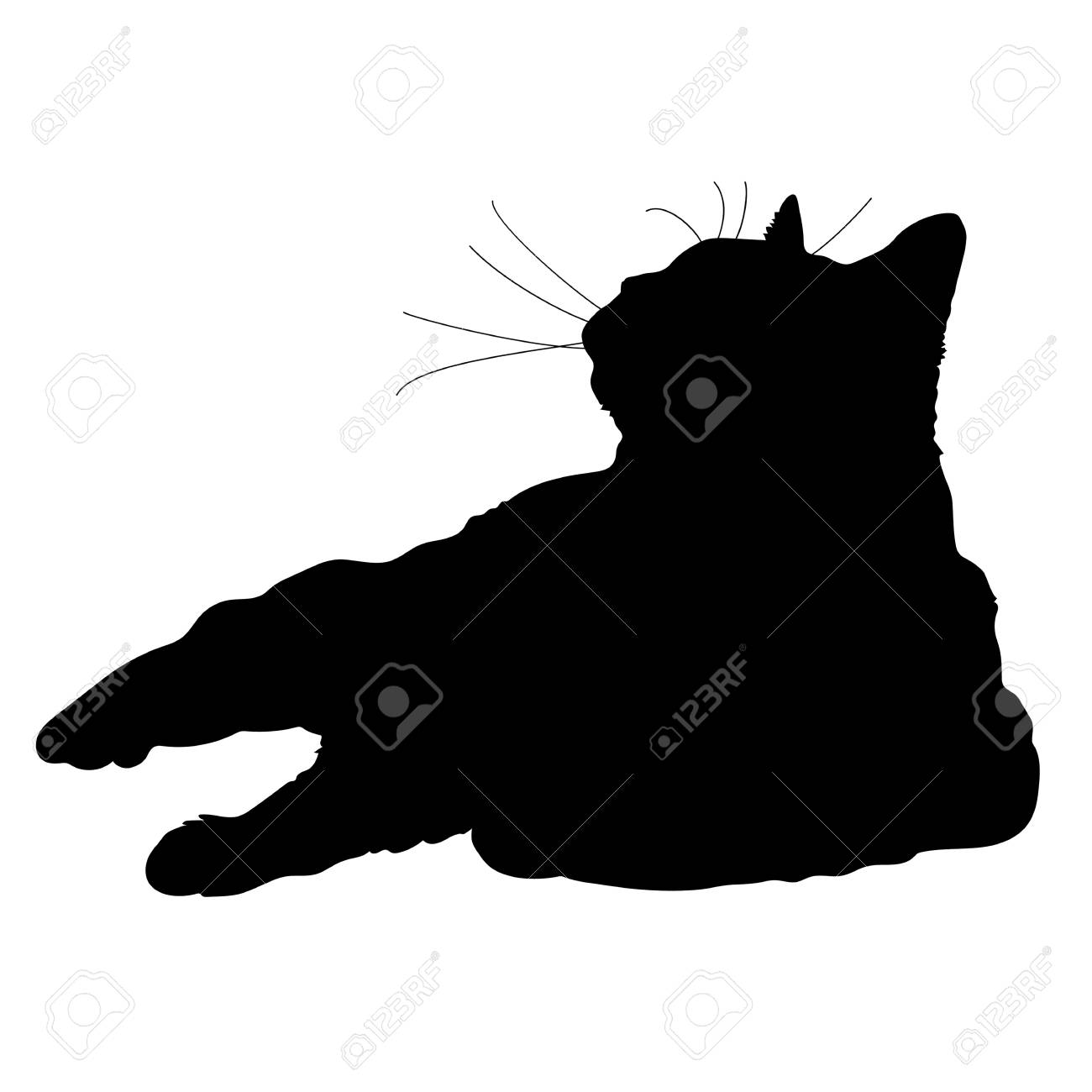 A black silhouette of a cat - 41855409