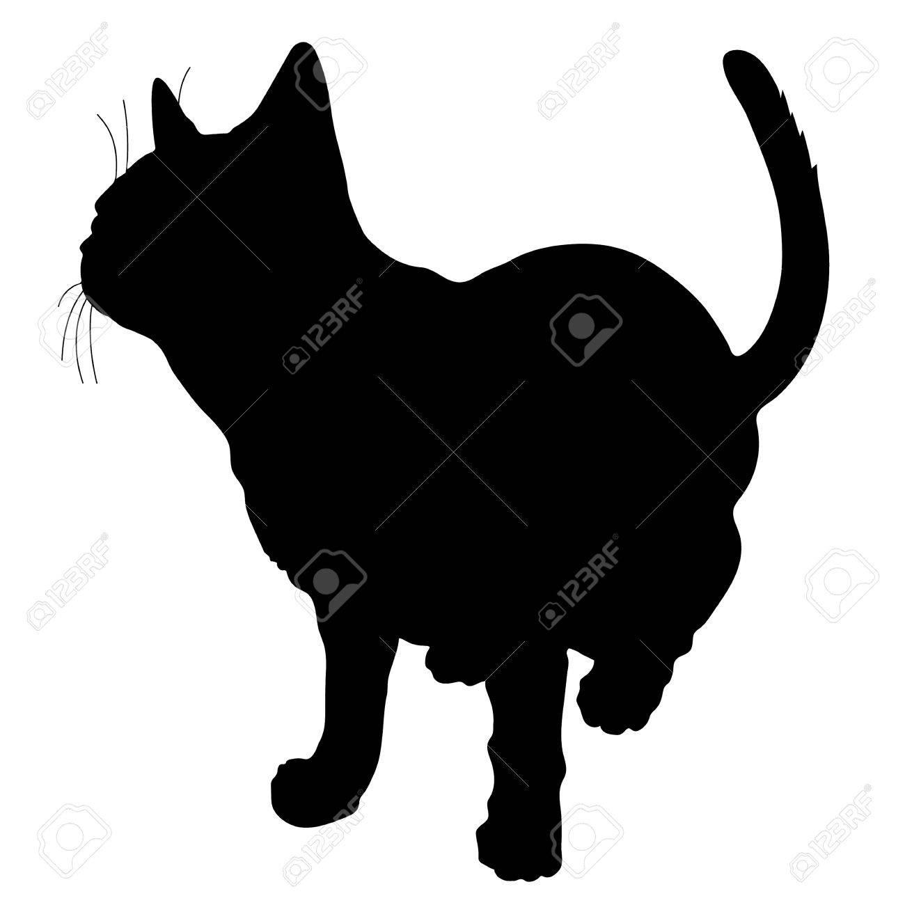 A black silhouette of a cat - 41855413