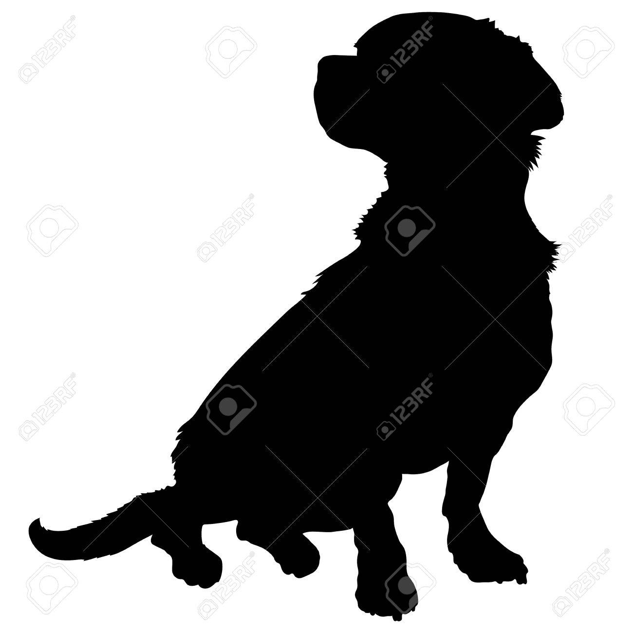 A black silhouette of a sitting mixed breed dog - 43537952