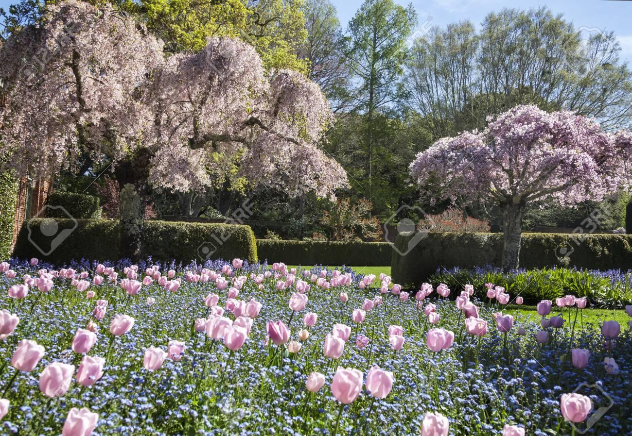 this image was taken at a formal garden near san francisco, california