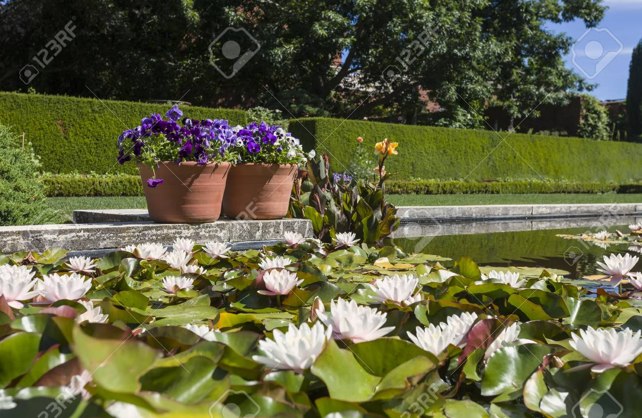 This Photo Was Taken At A Formal Botanical Garden Near San Francisco