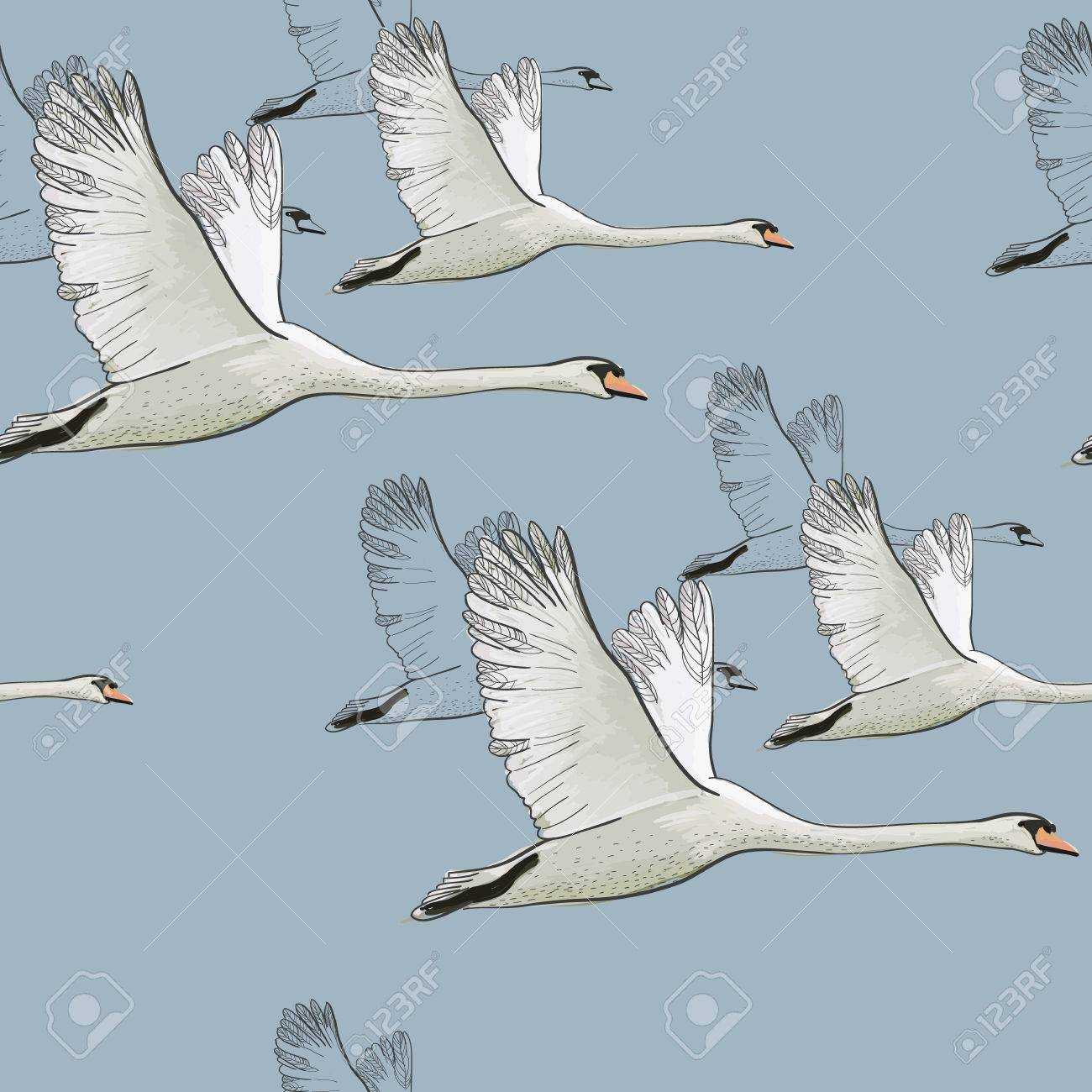 Illustration Of Seamless Pattern Of Drawing Flying Swans Hand