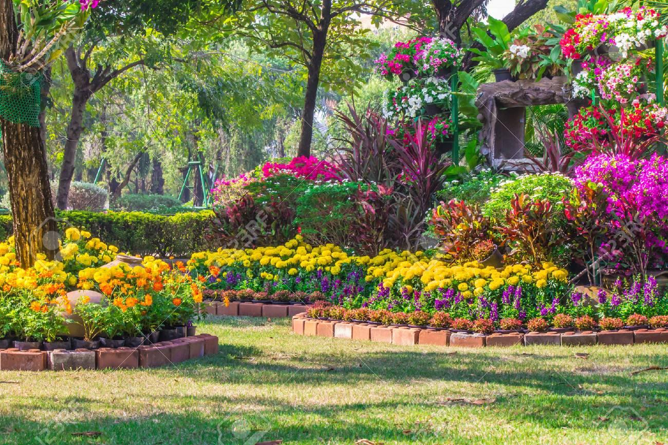 Jardin Fleuri Et Paysager Avec Beaucoup De Fleurs Colorées. Banque D ...