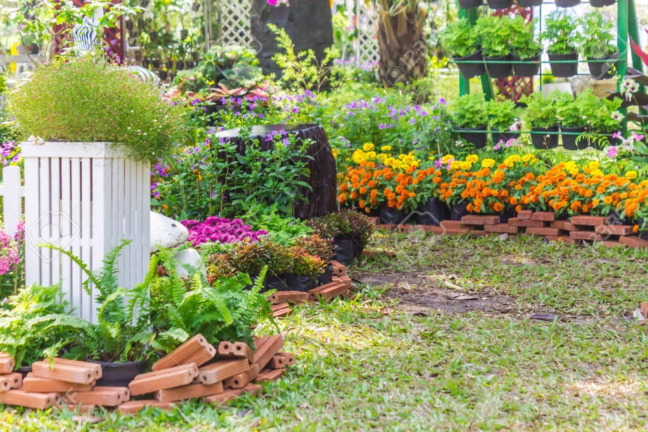 Weisser Palisadenzaun Umgeben Durch Blumen Im Vorgarten Auf Sommer