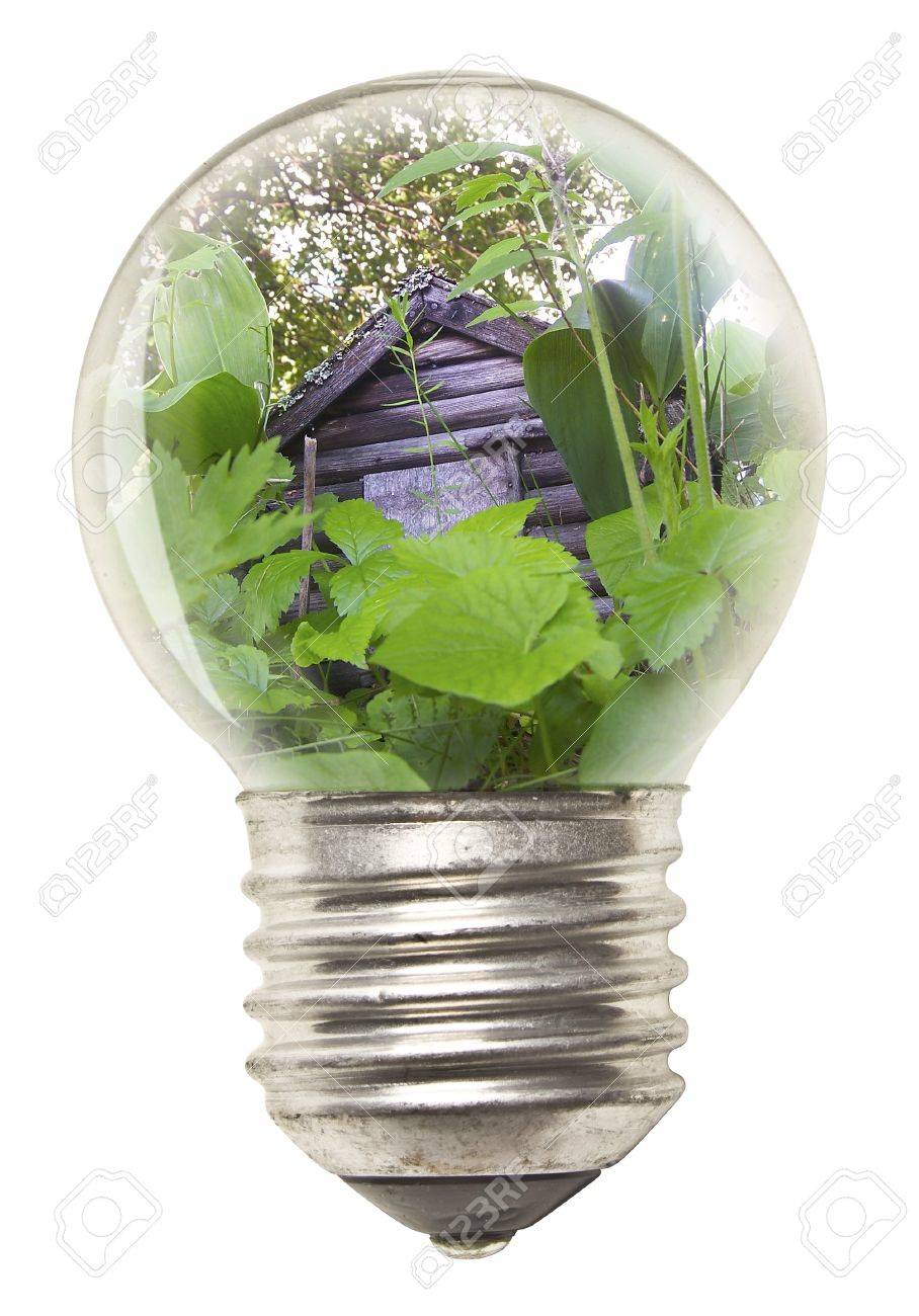 Ecological Concept - Bulb Stock Photo - 12917969