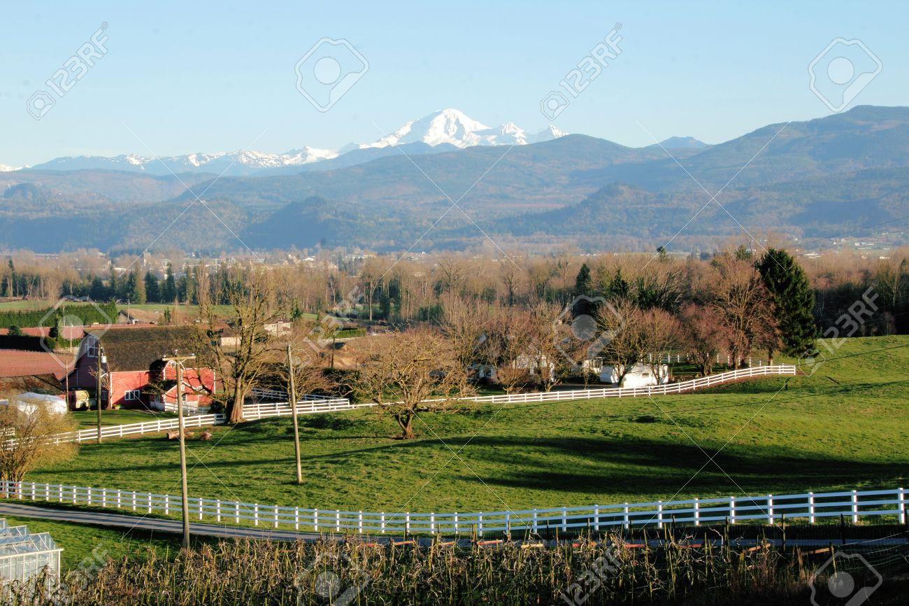 Landscape view of farm land and Mount Baker in Washington State