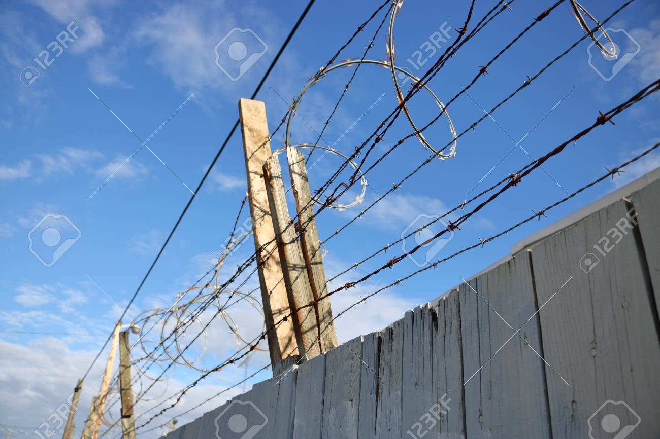Sharp, Coiled Barbed Wire Is Mounted On Top Of A Wooden Fence ...