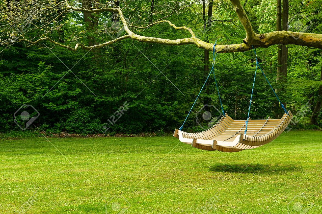 Curved swing bench hanging from the bough of a tree in a lush garden with woodland backdrop for relaxing on those hot summer days - 15183530
