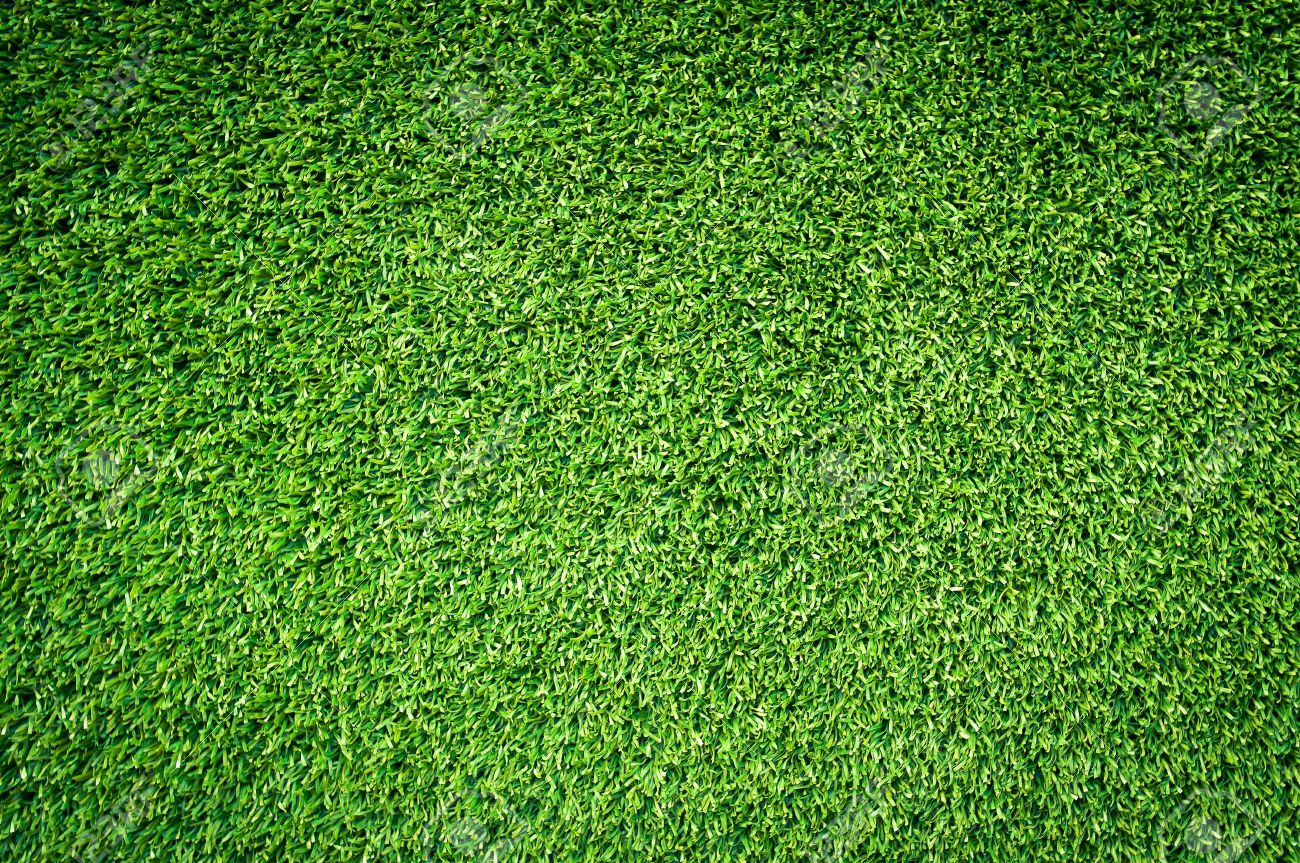 Fresh Close Up Green Grass Texture Background With Nuture Light Stock  KG65