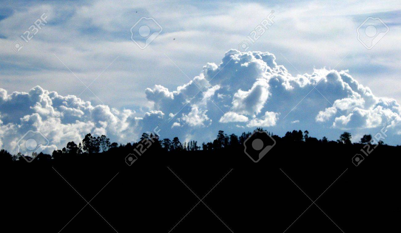 strong contrast on the horizon between clouds and forest Stock Photo - 7183584