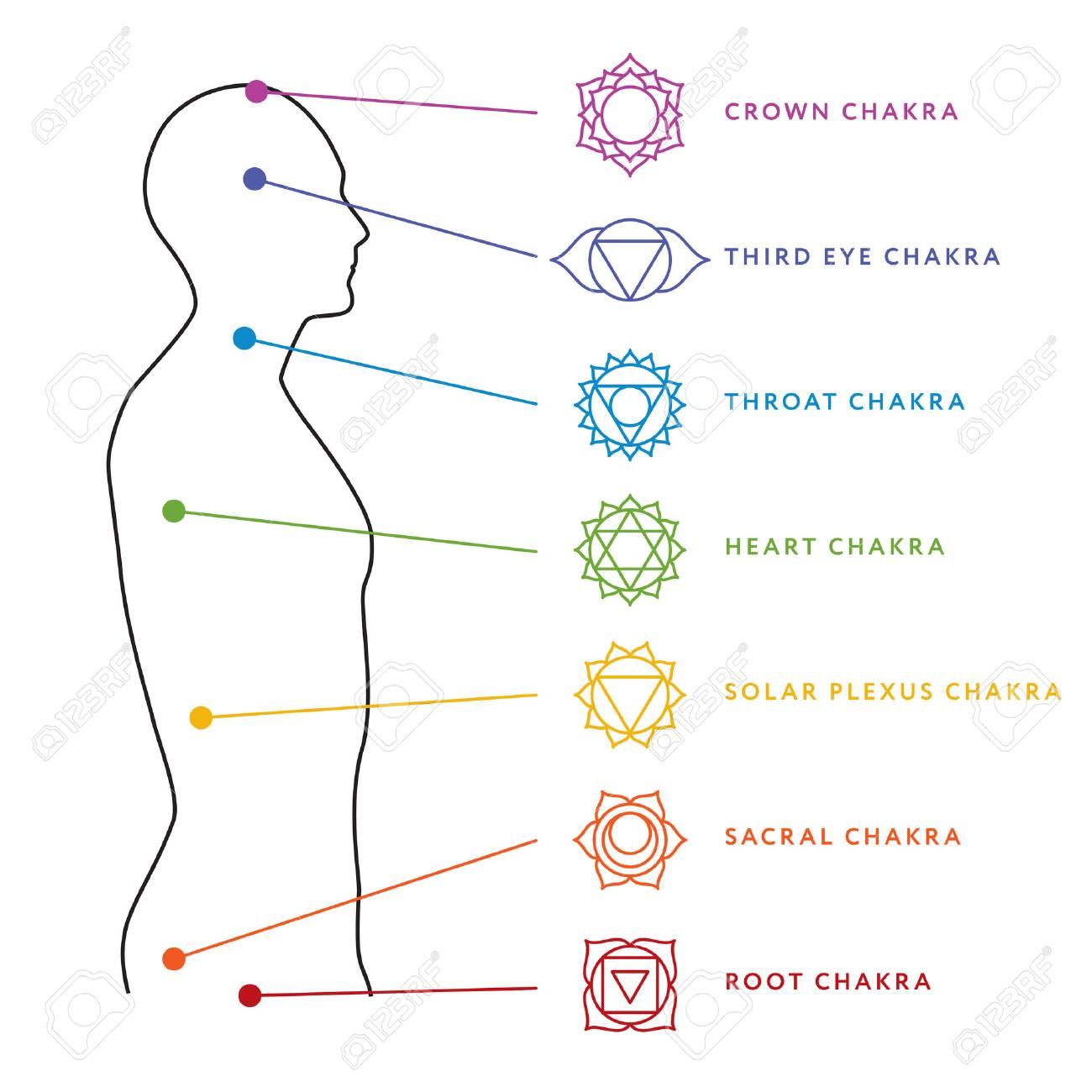 Chakra Sistema De Gráfico De Cuerpo Humano. Ilustraciones ...