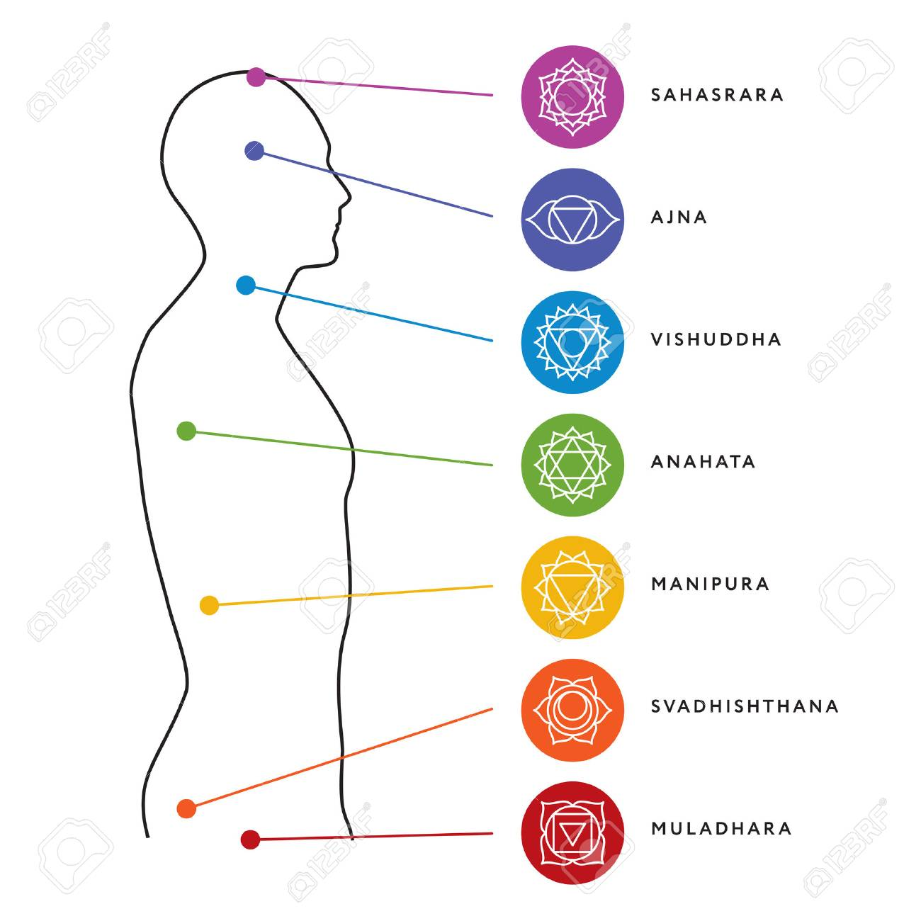 Chakra Sistema De Gráfico De Cuerpo Humano. Siete Símbolos De Chakra ...