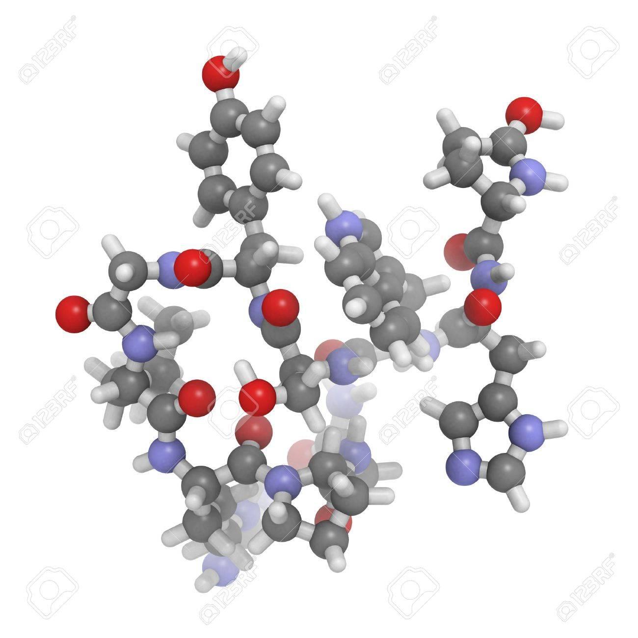 性腺刺激ホルモン放出ホルモン (...