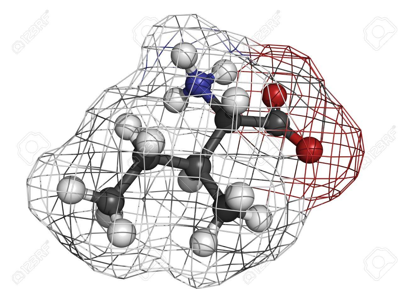 Isoleucine (Ile, I) amino acid, molecular model. Amino acids are the building blocks of all proteins. Atoms are represented as spheres with conventional color coding: hydrogen (white), carbon (grey), oxygen (red), nitrogen (blue) Stock Photo - 18016603