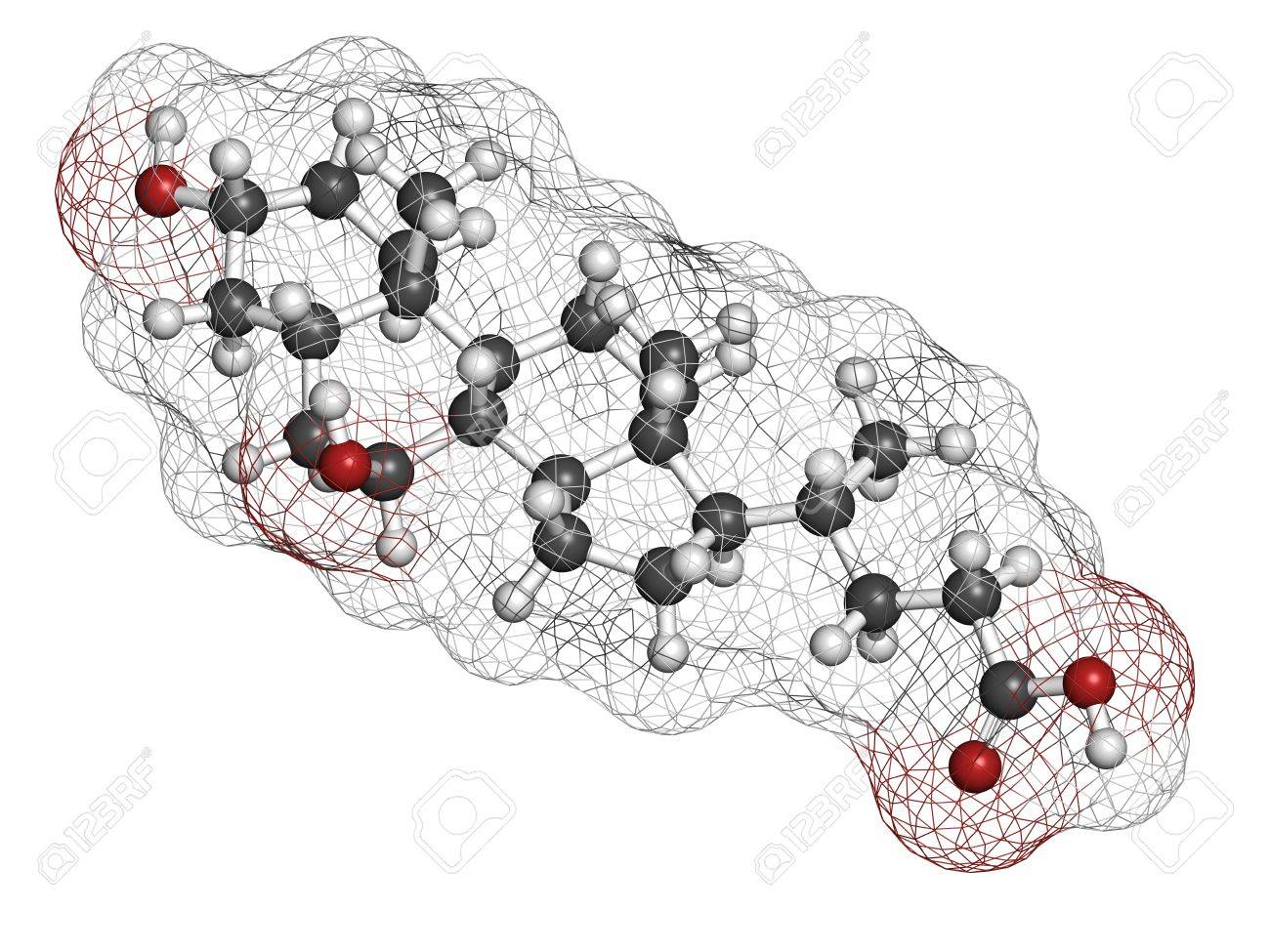 Ursodiol (ursodeoxycholic acid, UDCA) gallstone treatment drug, chemical structure. Atoms are represented as spheres with conventional color coding: hydrogen (white), carbon (grey), oxygen (red) Stock Photo - 21198972