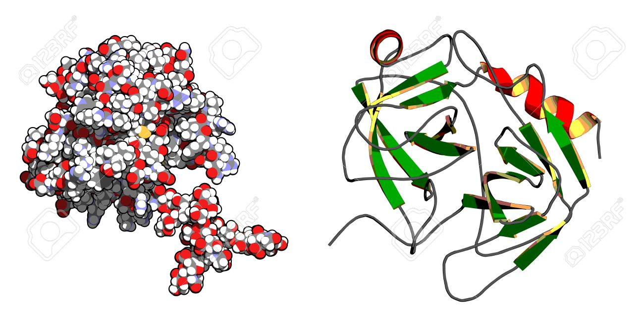 psa antigeno especifico de prostata