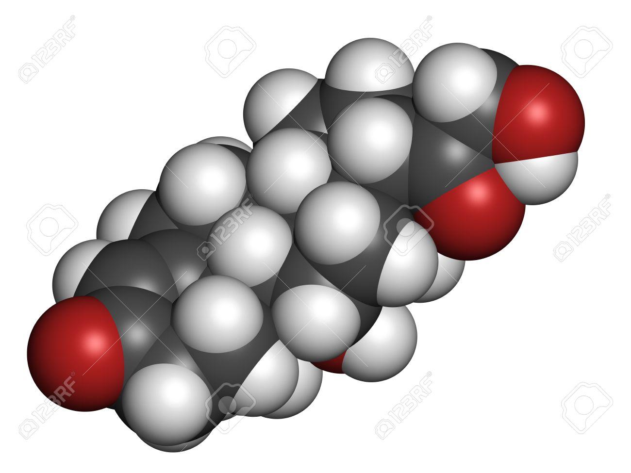Aldosteron Mineralokortikoid Hormon, Von Der Nebenniere Produziert ...