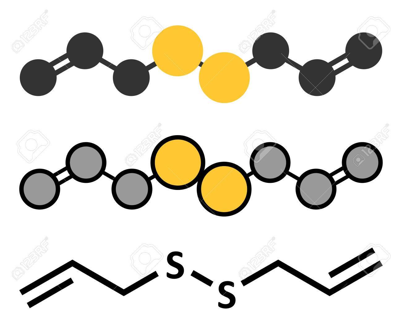 Diallyldisulfide Knoflook Molecuul Eén Van De Verbindingen Die Verantwoordelijk Zijn Voor De Smaak Geur En Gezondheidseffecten Van Knoflook