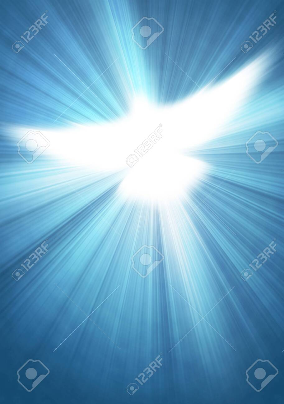 shining dove with rays on a blue background - 147182967
