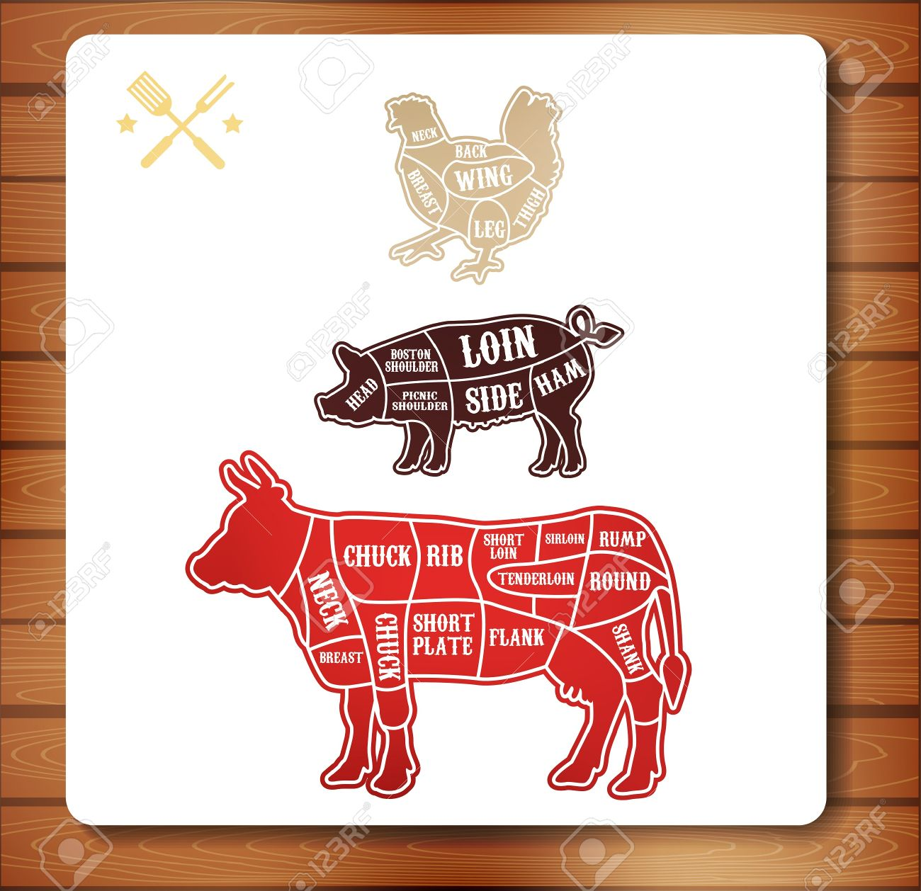 Vector Diagram Cut Carcasses Of Chicken, Pig, Cow Royalty Free ...