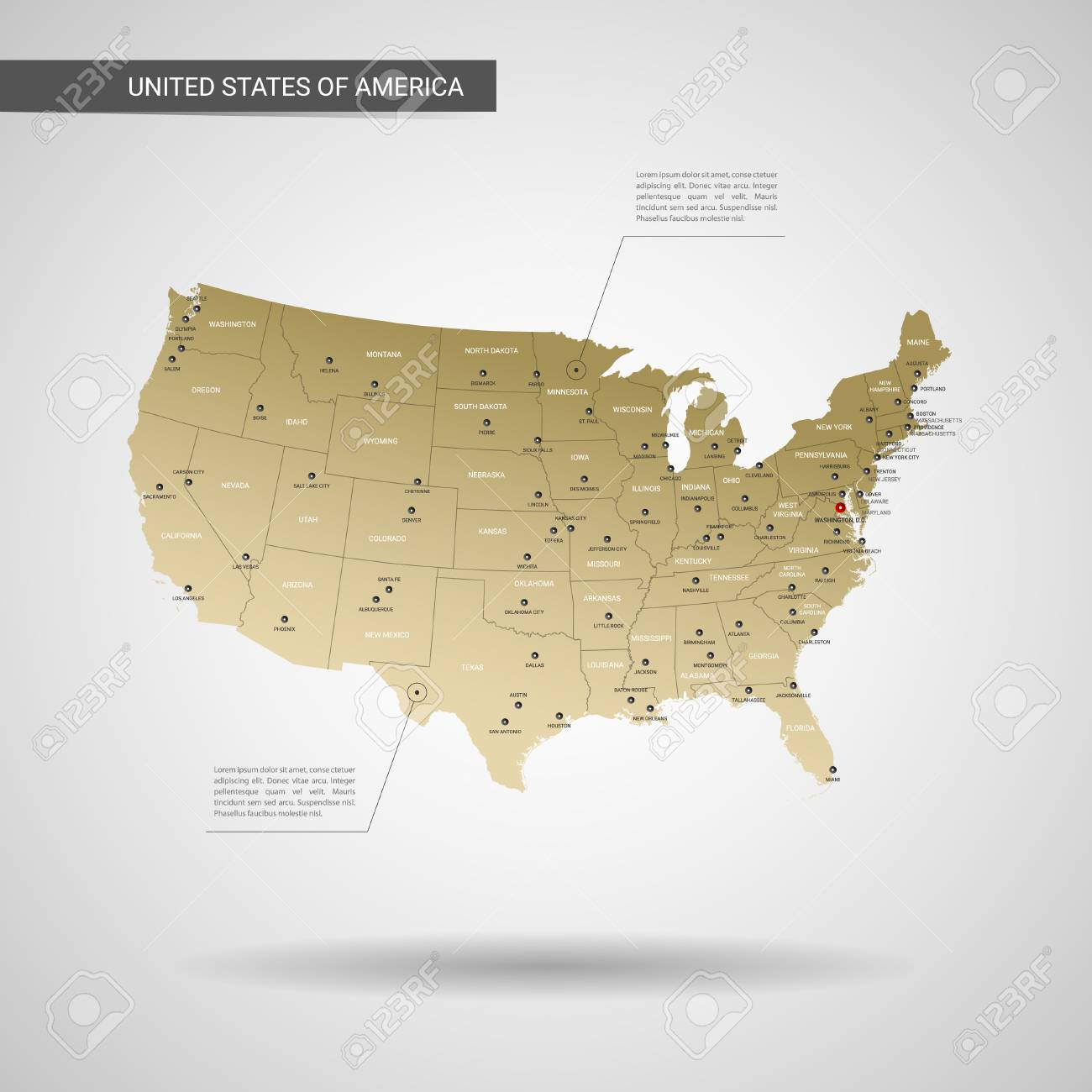 Stylized vector United States of America map. Infographic 3d..