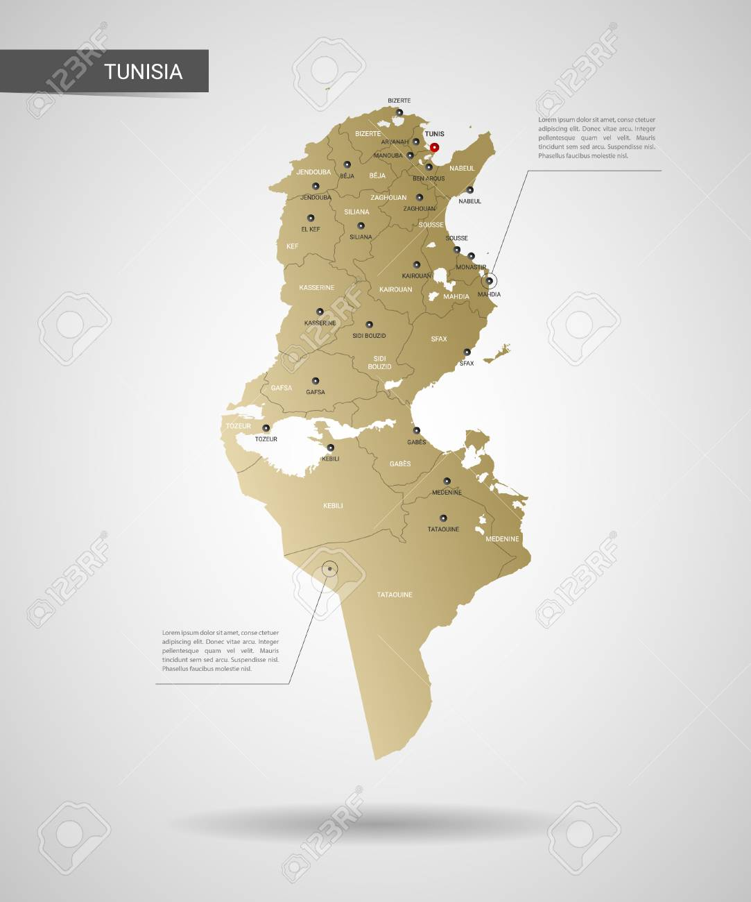 Stylized Vector Tunisia Map. Infographic 3d Gold Map Illustration ...