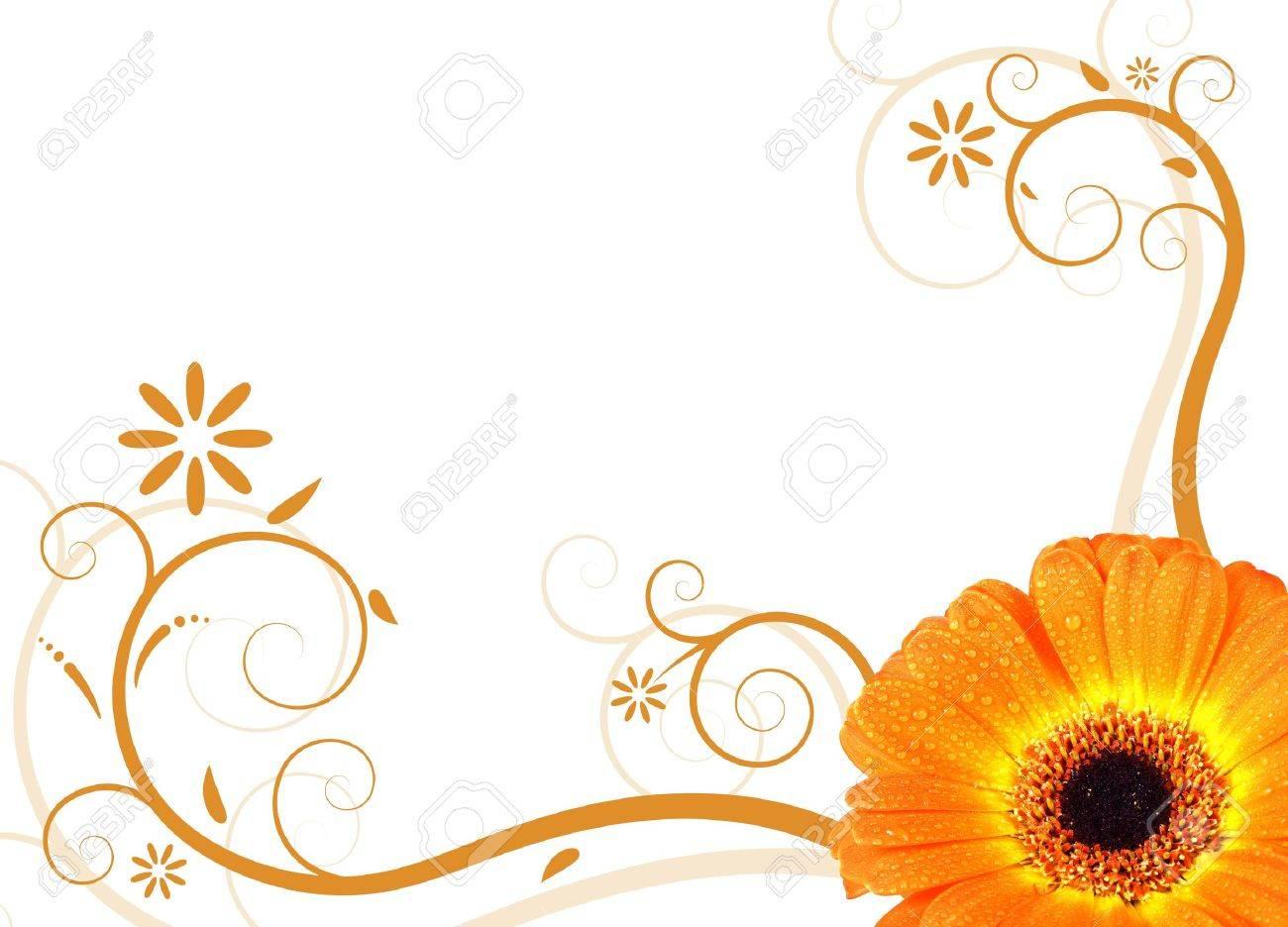 Banque dimages , gerbera fleur dorange frais illustré avec un dessin floral
